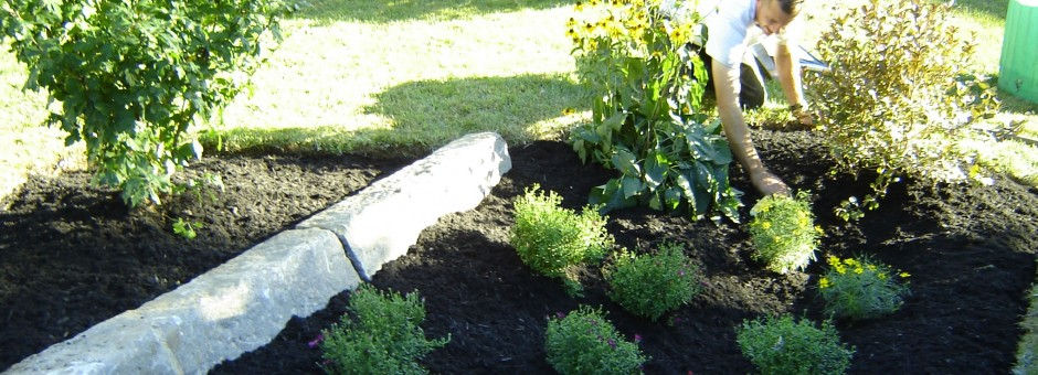 Rain gardens store rain and improve seepage...