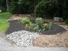 Boys & Girls Club Rain Garden