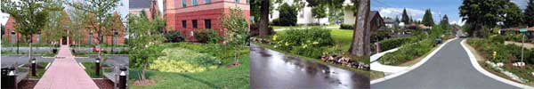 stormwater-collage